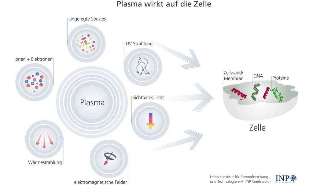 Plasma wirkt auf der Oberfläche der Zellen_2