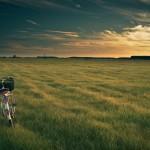 bikesale will sonnigen Zeiten entgegen fahren