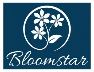 bloomstar_blue_logos_psd