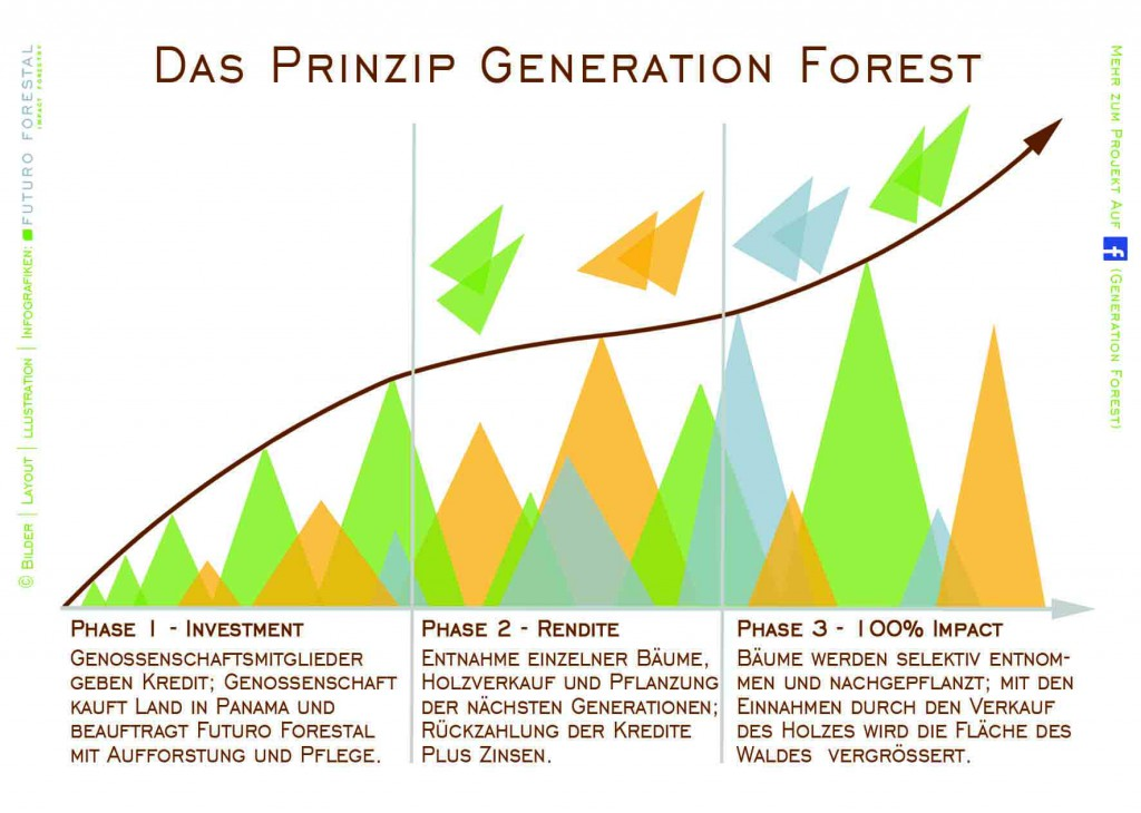 Infografik Generation Forest