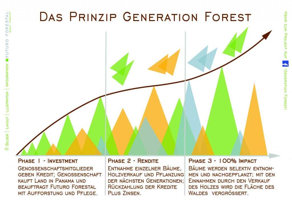 Infografik Generation Forest