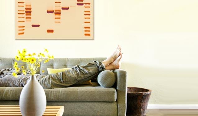 DNA print in Szene