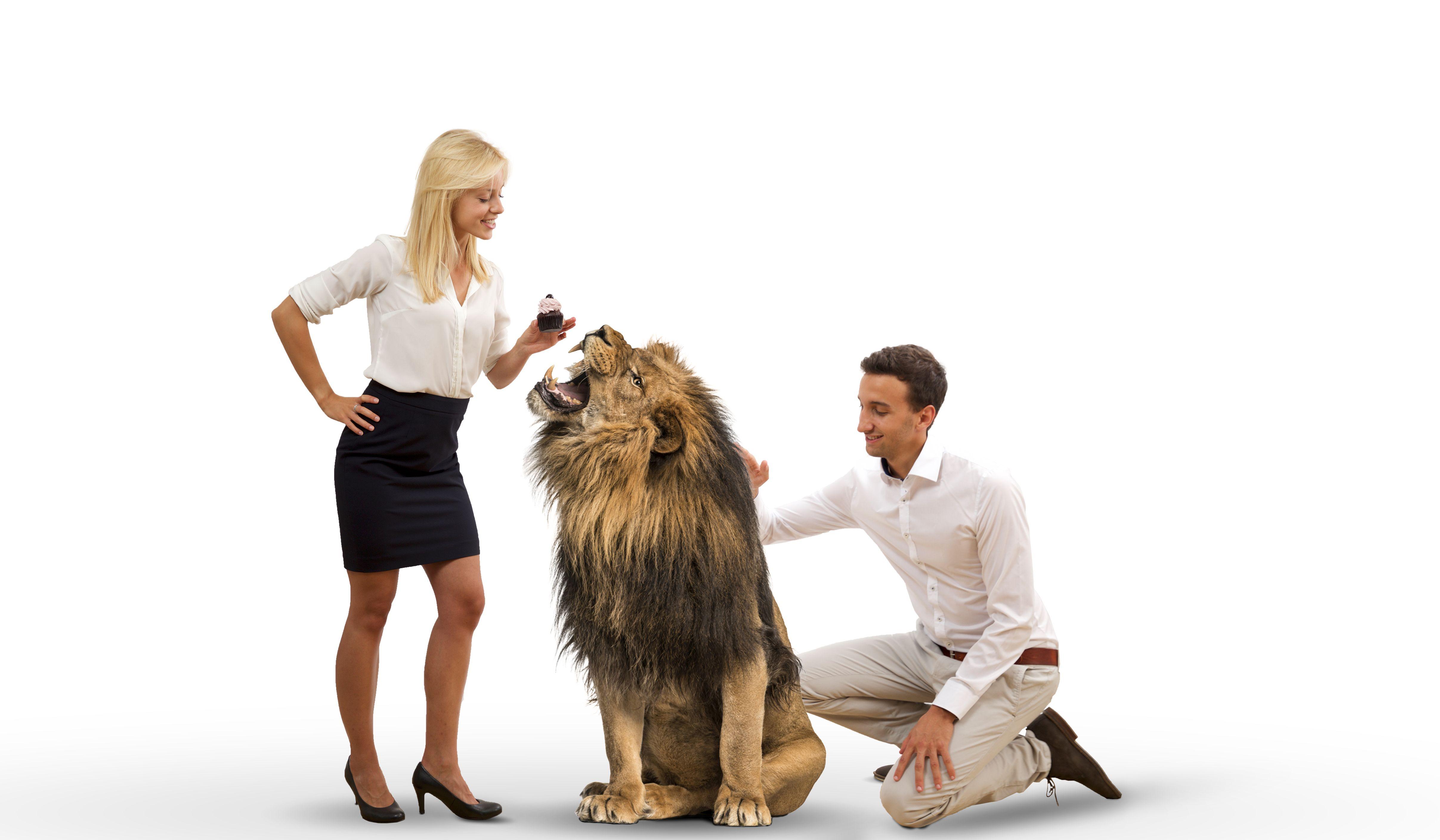 Wird ein Löwe den intueat-Gründern Mareike Awe und Marc Reinbach aus den Händen fressen?