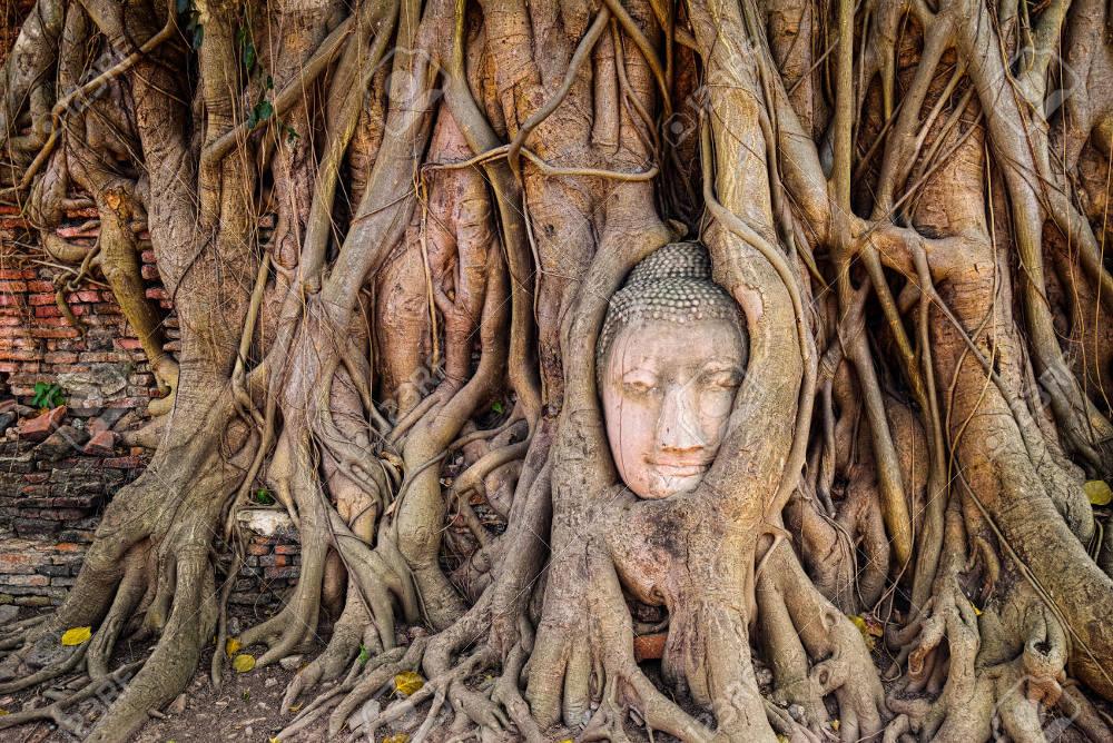 Die drei Persönlichkeitstypen nach Buddhaghosa