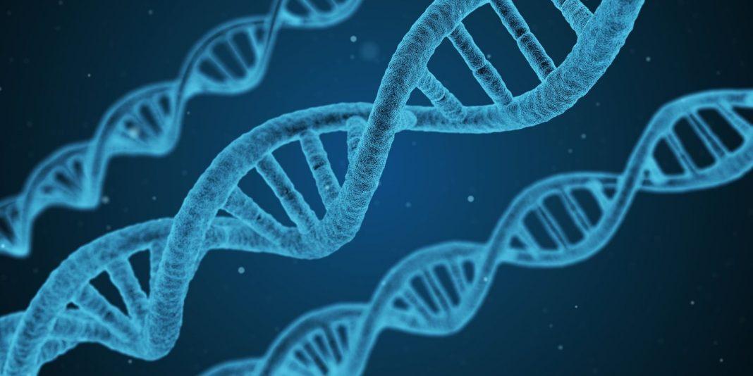 DNA-Strang Health Startup