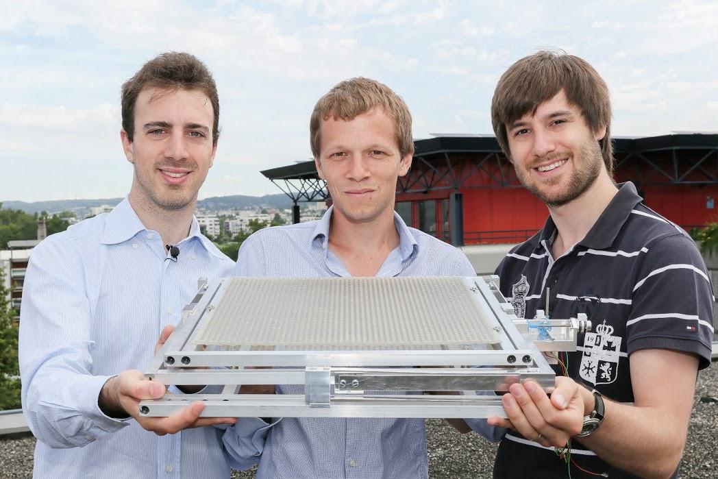 Sonnige Aussichten für Bienen und die Solarindustrie