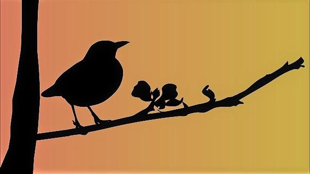 Early Birds first: Fünf gute Argumente, morgens früher aufzustehen