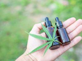 Cannabis_CBD_Stressbewältigung_Stress