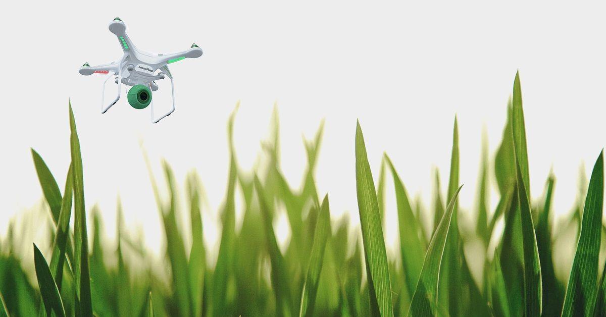 Drohnen gegen Hundekot